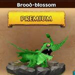 ROB-BroodBlossom-Baby.jpeg