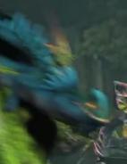 Dragon 5.2