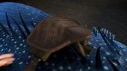 The saddle of Thornado