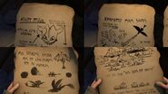 Night Fury Bork Notes