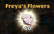 Freya's Flowers