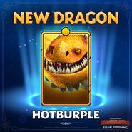 TU-New Dragon Hotburple Ad
