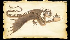Dragons bod zipple gallery image 04-1-