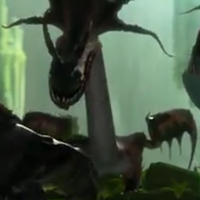 Dragon 9.1.png