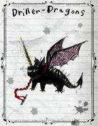 Driller Dragon Books