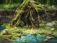 Cove Roots