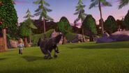 SH - Finngard running from a wolf