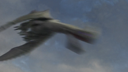 Female Razorwhip 51