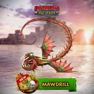ROB-Mawdrill Ad