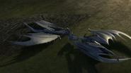 Baby Razorwhip 17