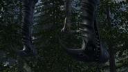 Female Razorwhip 1