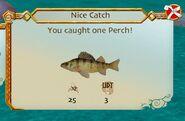 SOD-Perch