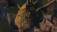 Eruptodon's face