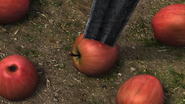 A full view of apples