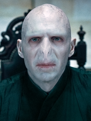 Lord Voldemort.PNG