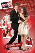 Lgpp31510+troy-gabriella-high-school-musical-3-poster