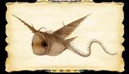 Dragons bod thunder gallery image 04-0