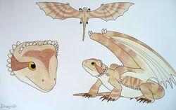 Draginfli's Bearded Dragon.jpg