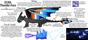 A diagram of Star, detailing her various abilities and attributes.