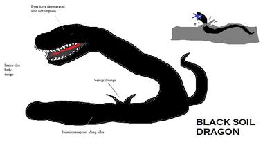Black Soil Dragon.png