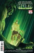 Immortal-Hulk-13-Marvel-Comics-Alex-Ross-Cover