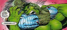 2246001-596783 maestro hulk3.jpg