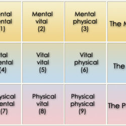 Physical-Vital-Mental
