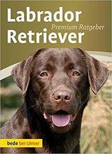 Labrador ratgeber.jpg