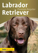 Labrador-Retriever MzQ0Mzg0Ng-250x347