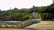 Piranhaconda5