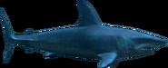 Deep blue sea mako shark png by sonic2006fan-dca2jn5