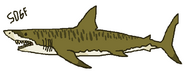 Tiger shark deep blue sea by sonic2006fan-dcau6uu