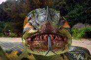 PiranhacondaSnake