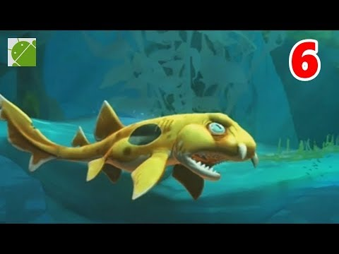 Epaulatte Shark