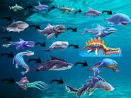Evolution order