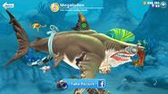 Megalodon!! Shark Description