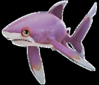 Shark Hungry Shark Wiki Fandom