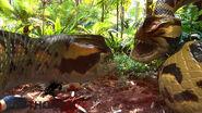 Piranhacondas