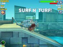 SurfnTurf.jpg