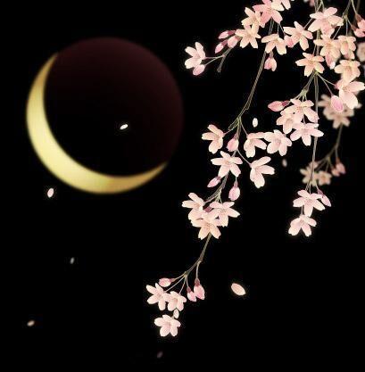Moon-flower-simple-night.jpg