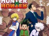 Hunter X Hunter Anime 2011