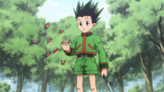Hemotropic Butterfly attracted to Gon blood