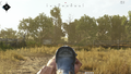 Cnk iron sights.png