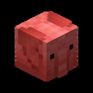 Red Elephant Skin