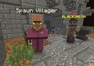 Spawn Villager