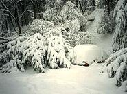 1993 Storm of the Century Asheville, North Carolina snowfall
