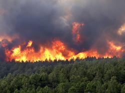 Wildfire-colorado-springs.png