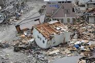 Earthquake Damage (12)