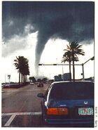 Tornado in tampa those crazy floridians are getting what they deserve