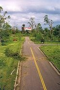 Hermitage Tornado Damage 2 1998